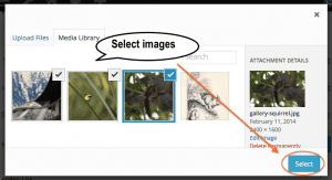 Select Images