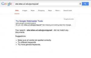 Search test fail