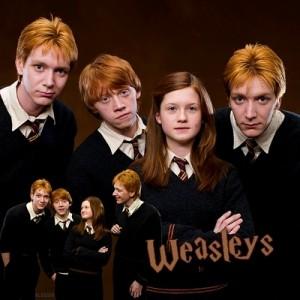 OOTP-weasleys-18275154-400-400