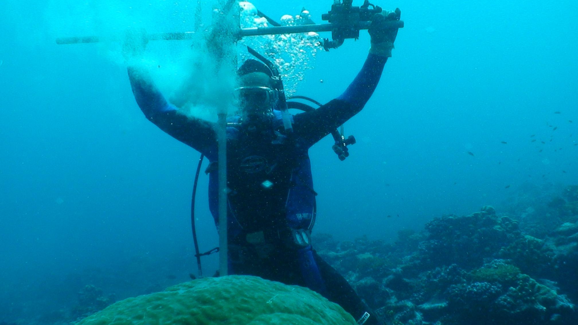 core coral