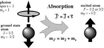 nmr photon absorption
