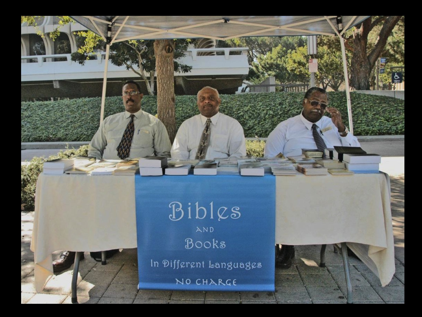 Bibles and Books