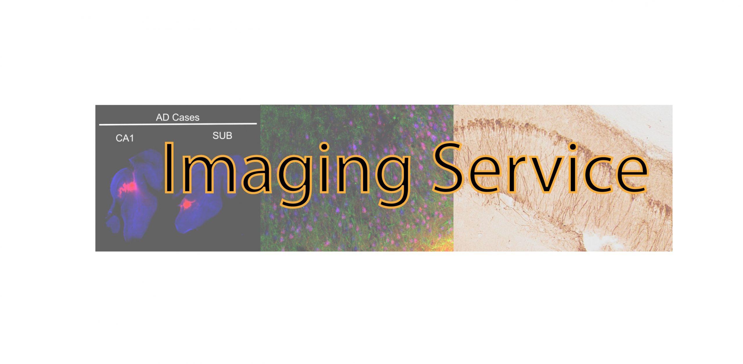 imaging-service