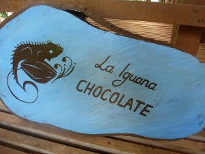 Chocolate Farm