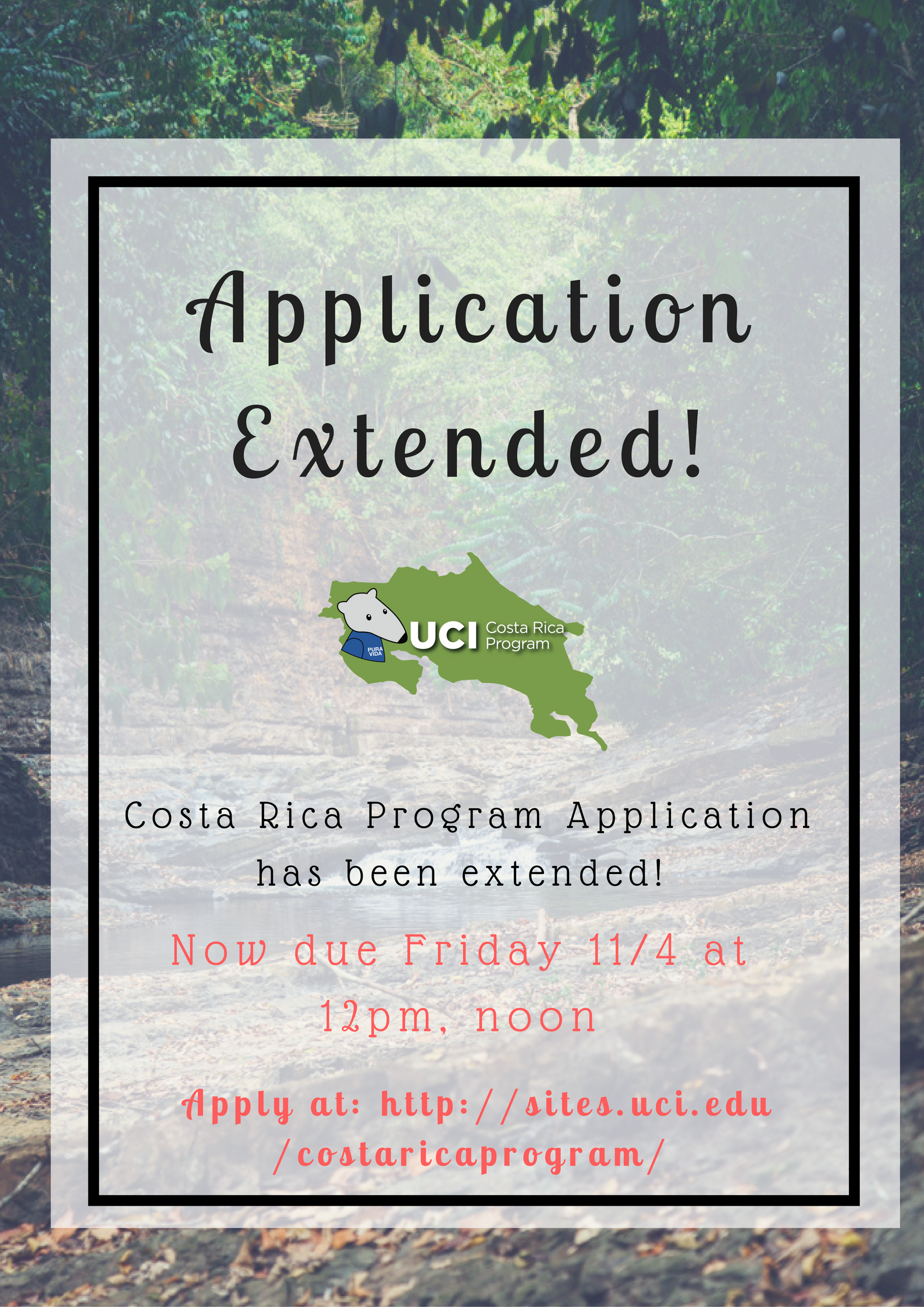 application-extended