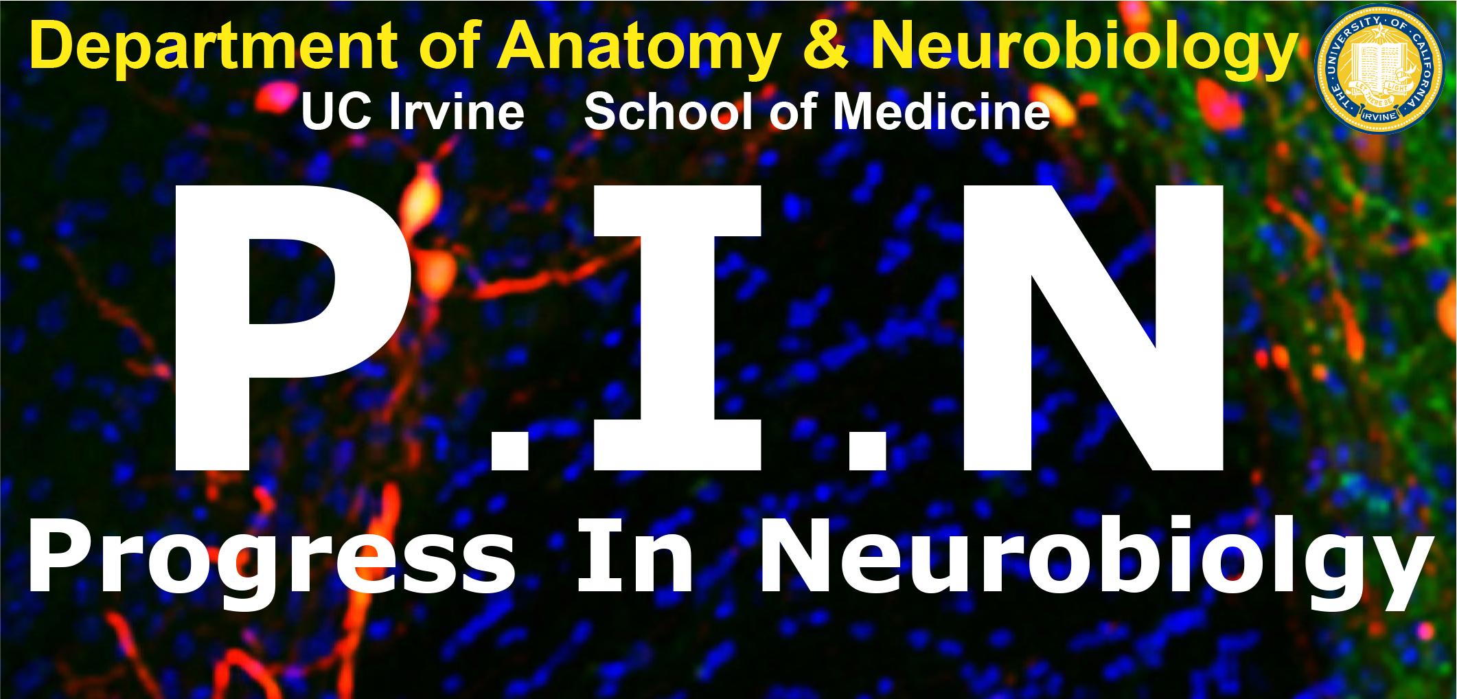 PIN seminar logo