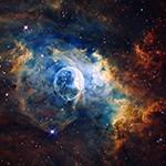 cosmos-002