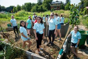Service Plunge 2018 image at Village Gardens Seeds of Harmony Community Orchard