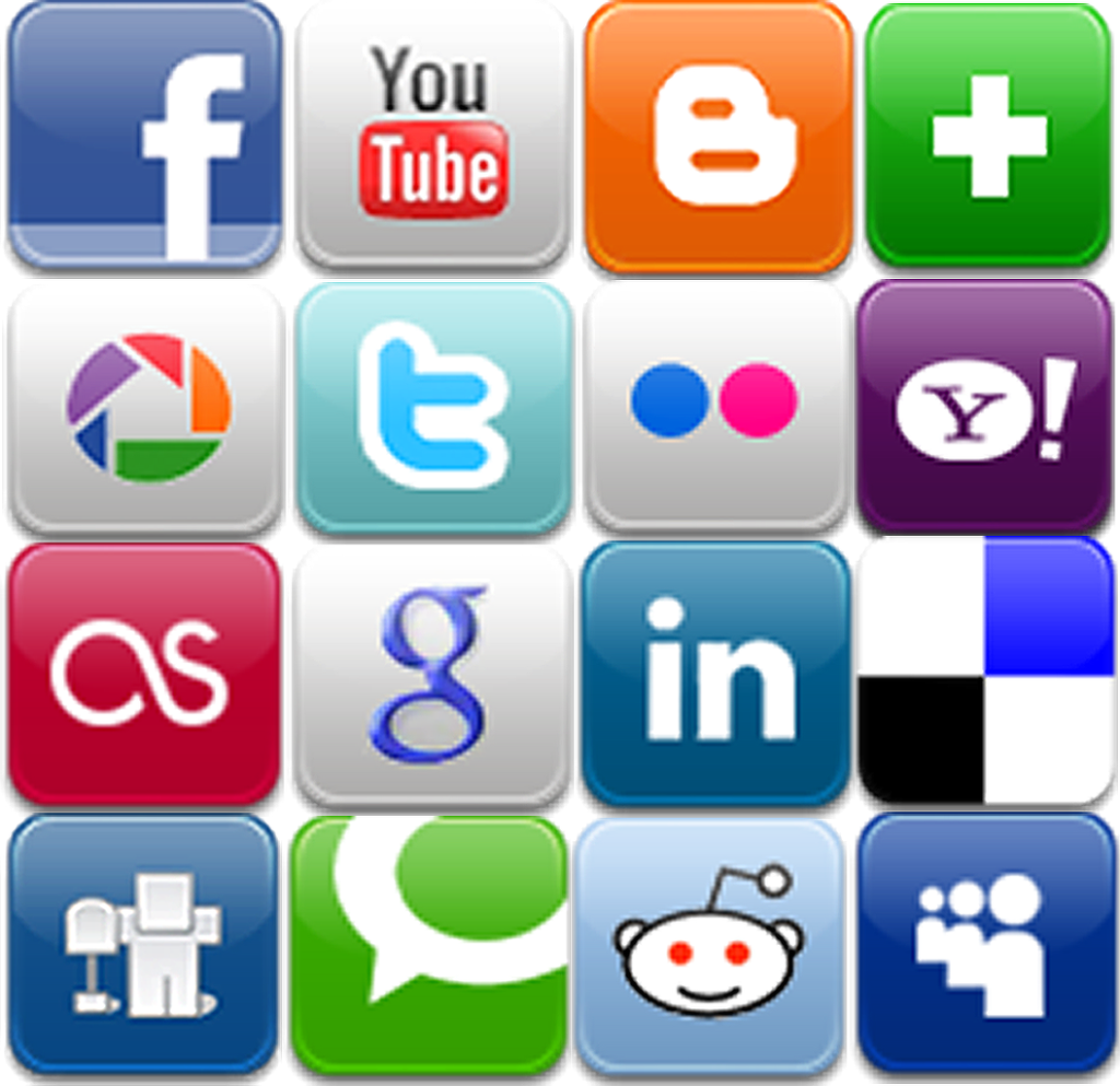 What could be the negative effects of social networking sites on politics?