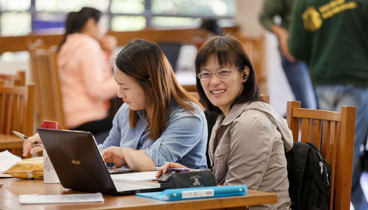 Students studying at McDermott Library.