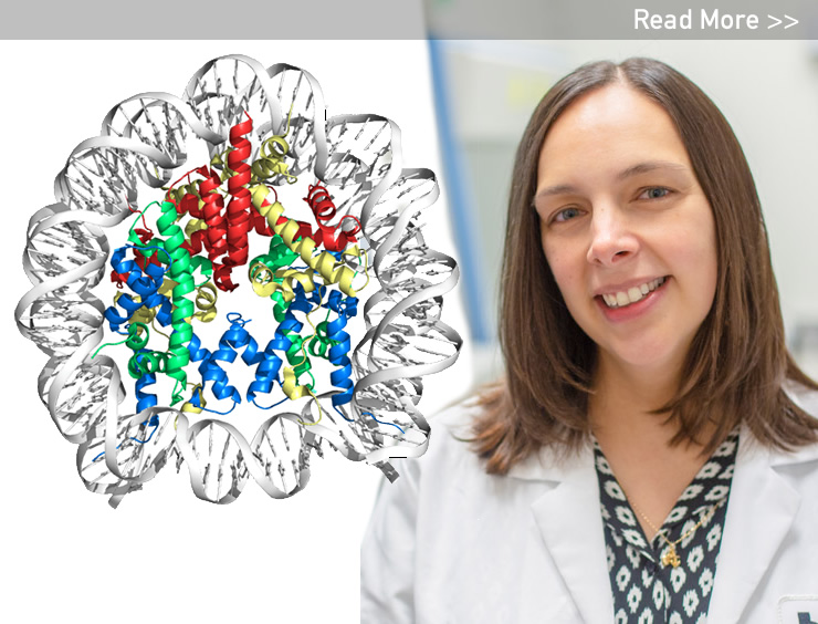 NIH Grant Enables Dr. Sheena D'Arcy To Unwrap DNA Mysteries