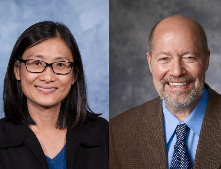 Chemistry Professors Named Fellows of Prestigious Science Organization(AAAS)