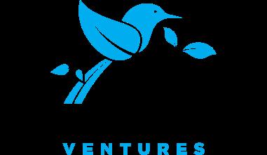 Mockingbird Ventures